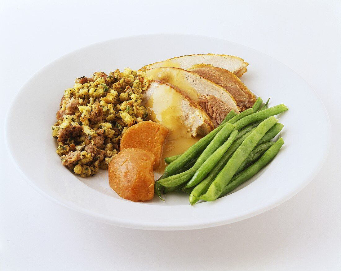 Single Serving of Turkey Dinner on a White Dish