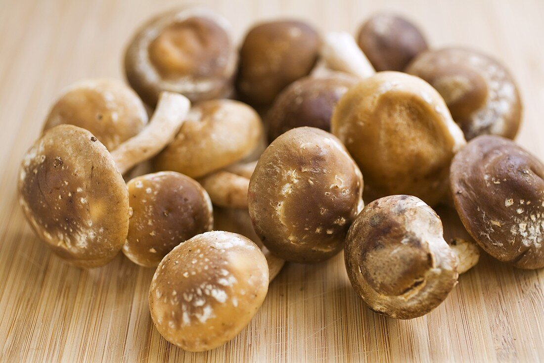 Many Fresh Shiitake Mushrooms