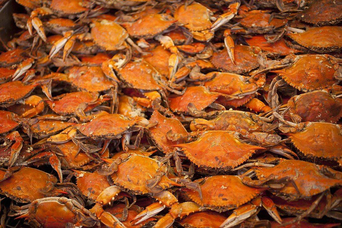 Many Crabs at the Market