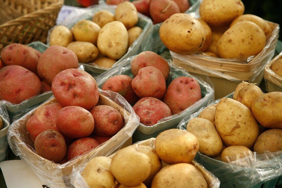 Red and White Organic Potatoes at Farmer's Market