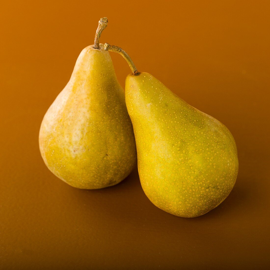 Two Bosc Pears