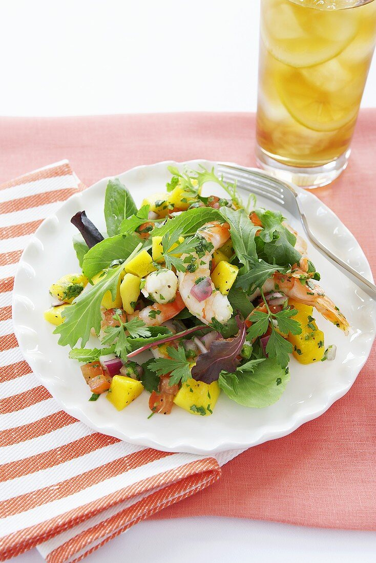 Shrimp Salad with Green, Onions, Tomato and Mango; On White Plate