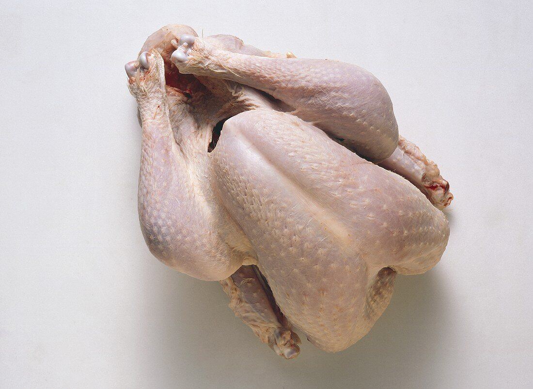 A Whole Fresh Baby Turkey; Uncooked