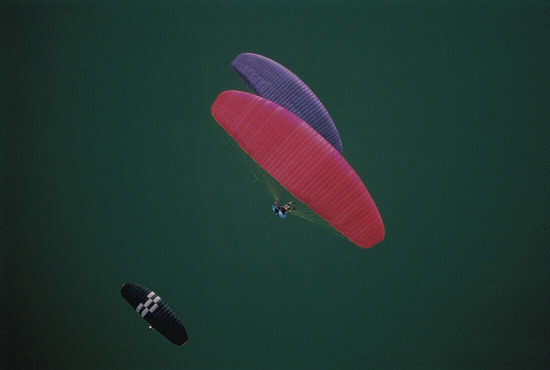 Paragliders, Kochelsee, Bavaria