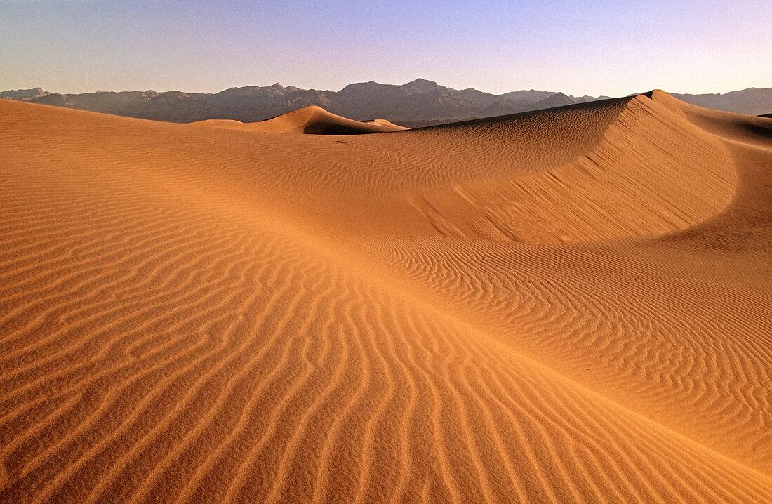 Mesquite Flat Sand Dunes, Death Valley. … – Bild kaufen – 20 ...