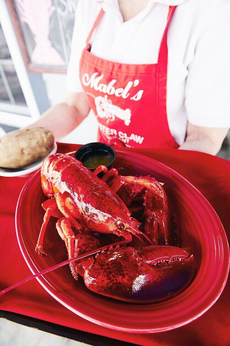 Mabel´s Lobster Claw restaurant, Kennebunkport, Maine, USA