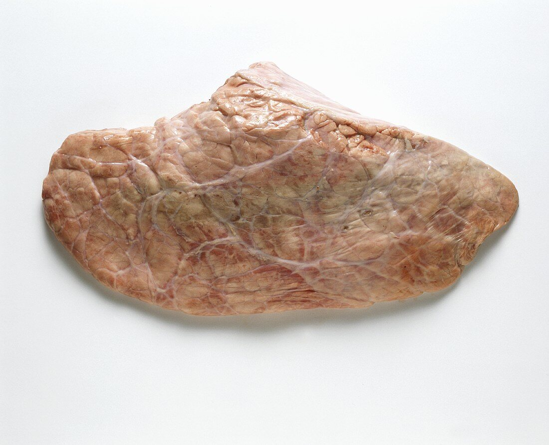Veal Lung