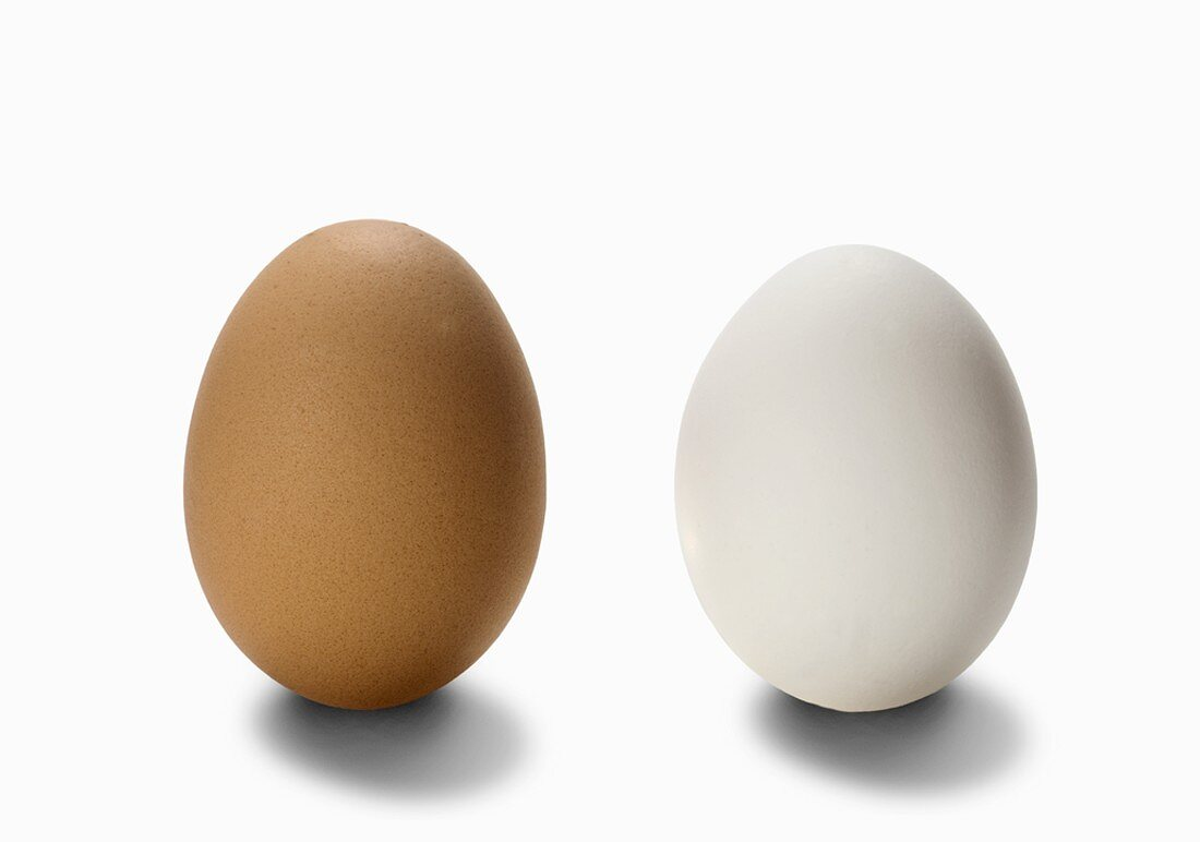 One Brown and One White Egg on a White Background