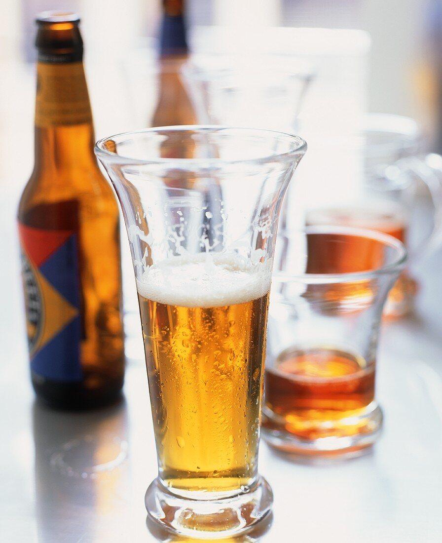 Tall Beer Glass Half Full; Beer Bottles and Glasses
