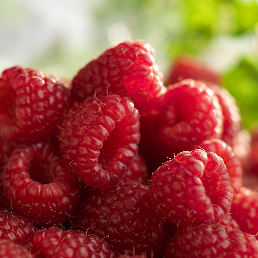 Fresh Raspberries; Close Up