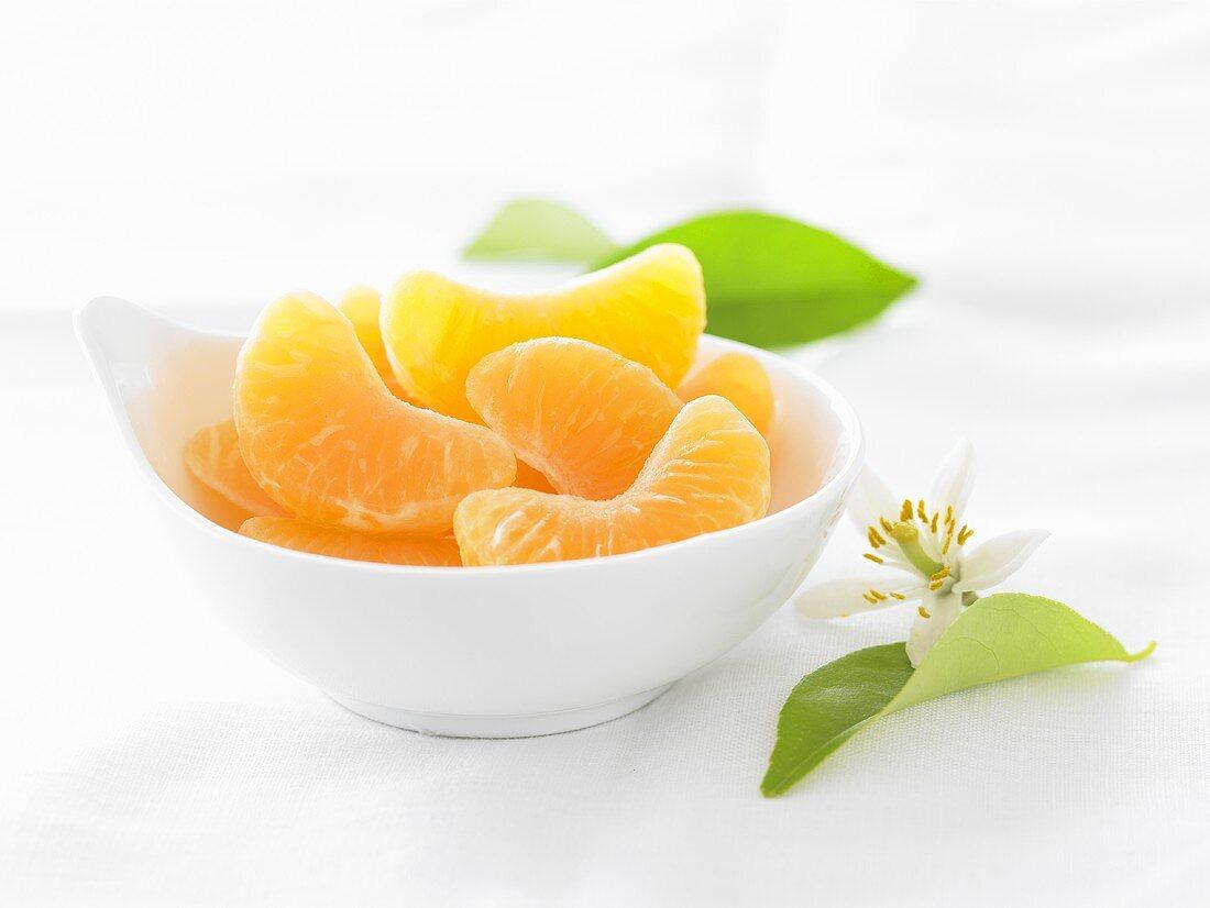 Bowl of Orange Segments