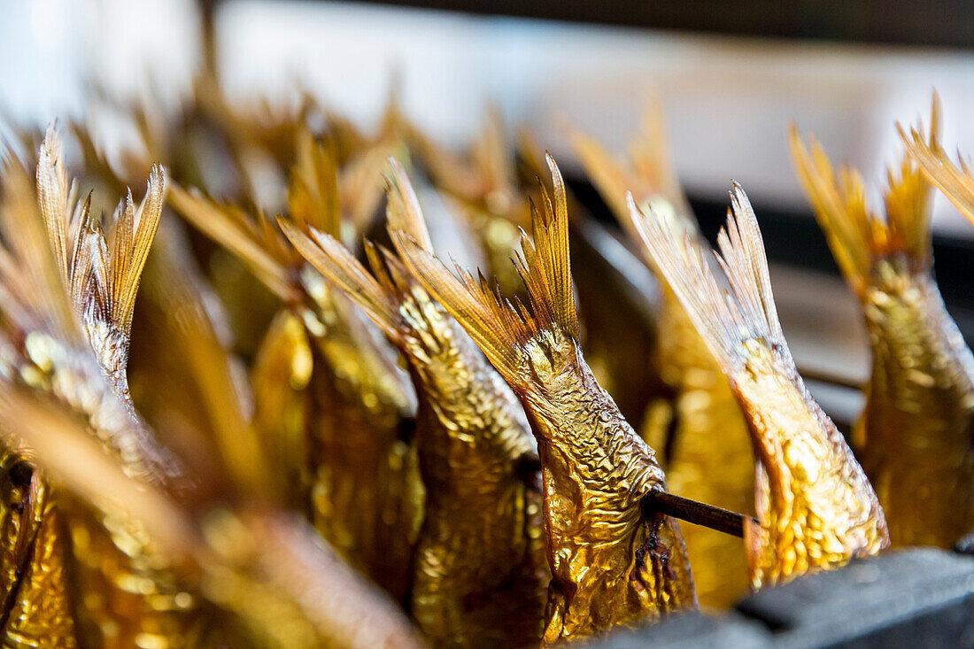 Smoked fish, herring, smokehouse, fishing village, Baltic sea, Bornholm, Allinge, Denmark, Europe