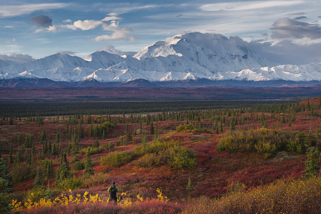 Asian hiker admiring scenic view of mountain range