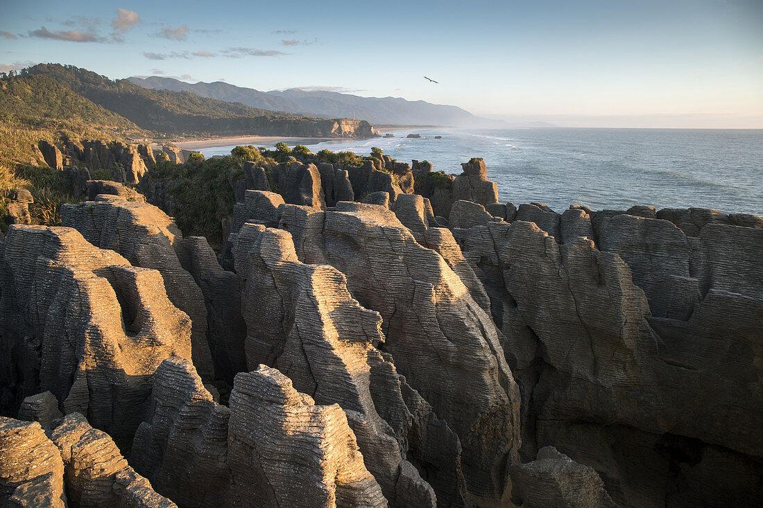 Ausblick auf Pancake Rocks im Paparoa Nationalpark an der West Coast in Neuseeland