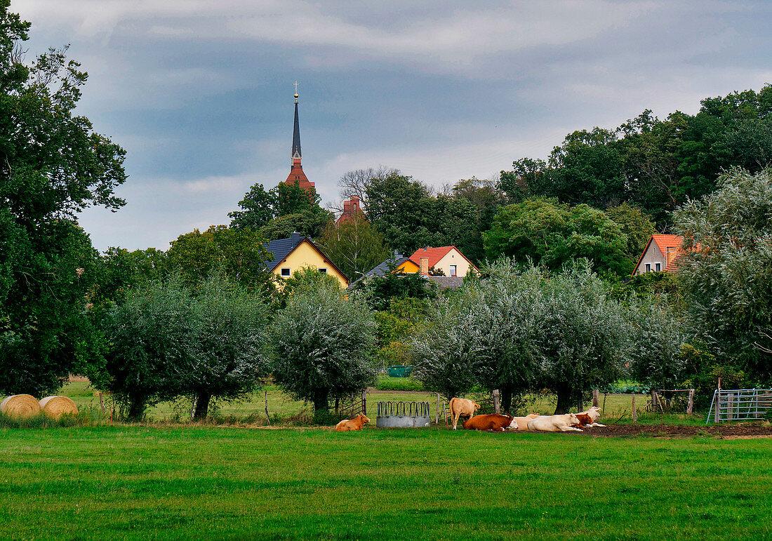 Golm, Potsdam, Land Brandenburg, Deutschland