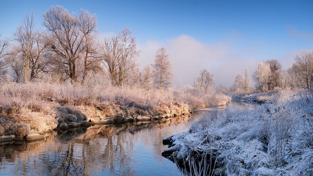 Loisach im Winter mit Rauhreif auf den Blättern und Gräsern, Grossweil, Bayern, Deutschland