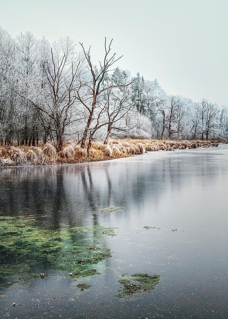 Winterlandschaft mit Schneefall am See, Andechs, Bayern, Deutschland