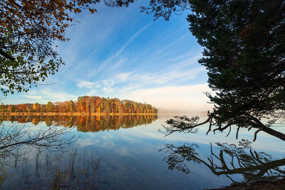 Herbstmorgen an den Osterseen, Oberbayern, Bayern, Deutschland