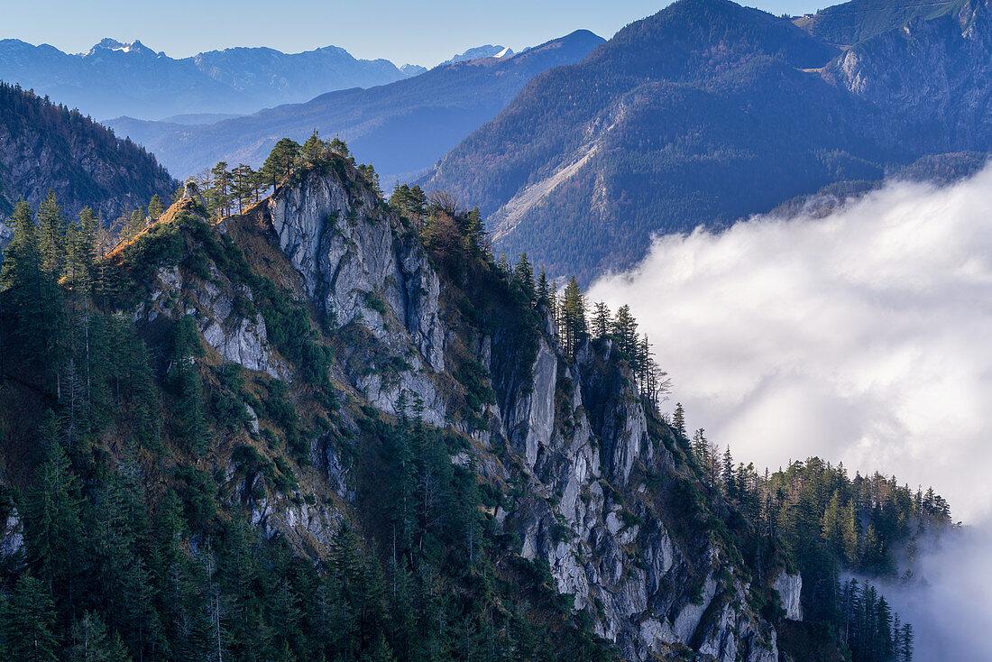Novembermorgen am Graseck, Kochel am See, Oberbayern, Bayern, Deutschland