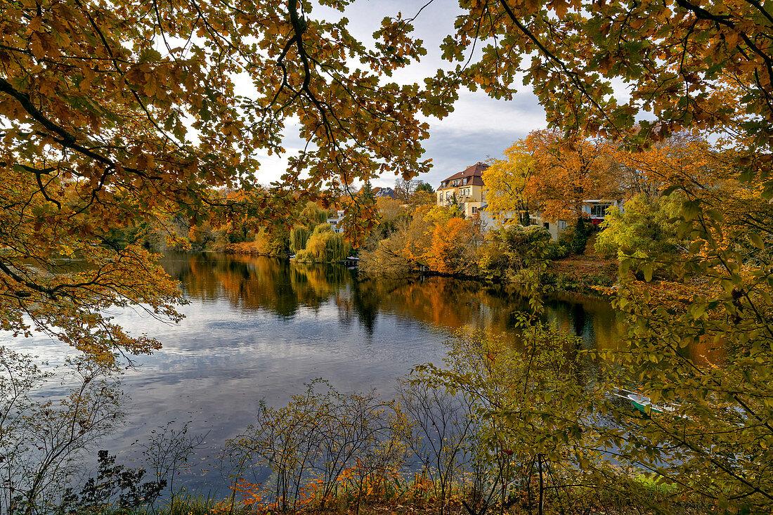 Hubertussee im Herbst, Bezirk Charlottenburg-Wilmersdorf in der Villenkolonie Grunewald, Berlin, Deutschland