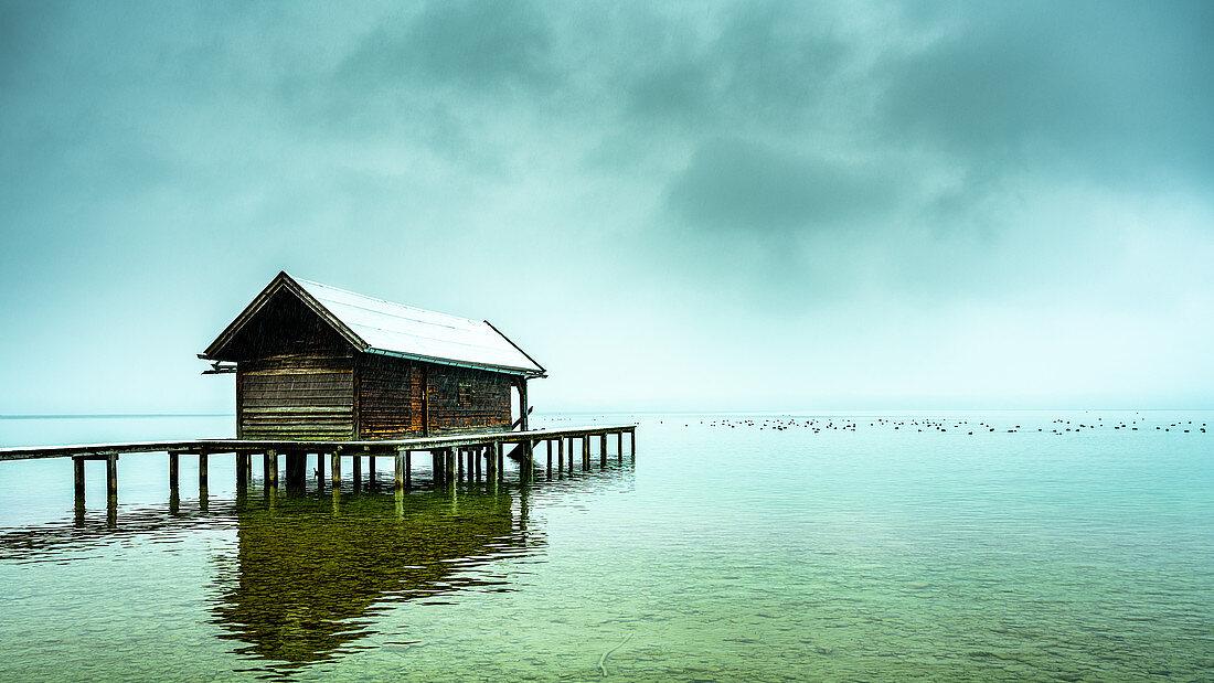 Beschneite Bootshütte mit Steg im Nebel am Starnberger See, Tutzing, Bayern, Deutschland