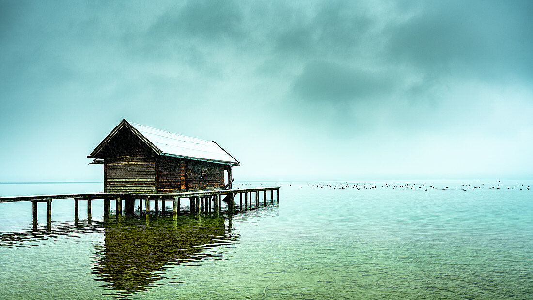Snow-covered boat hut with jetty in the fog on Lake Starnberg, Tutzing, Bavaria, Germany
