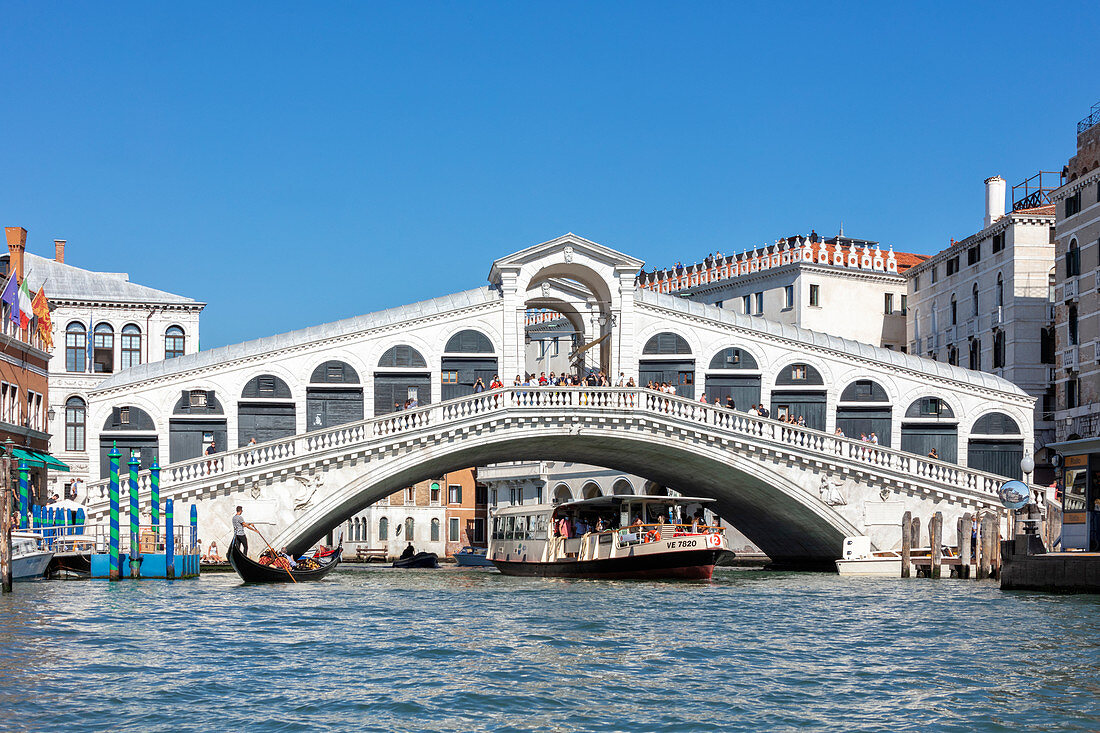 Rialto Bridge over the Grand Canal in Venice, Veneto, Italy