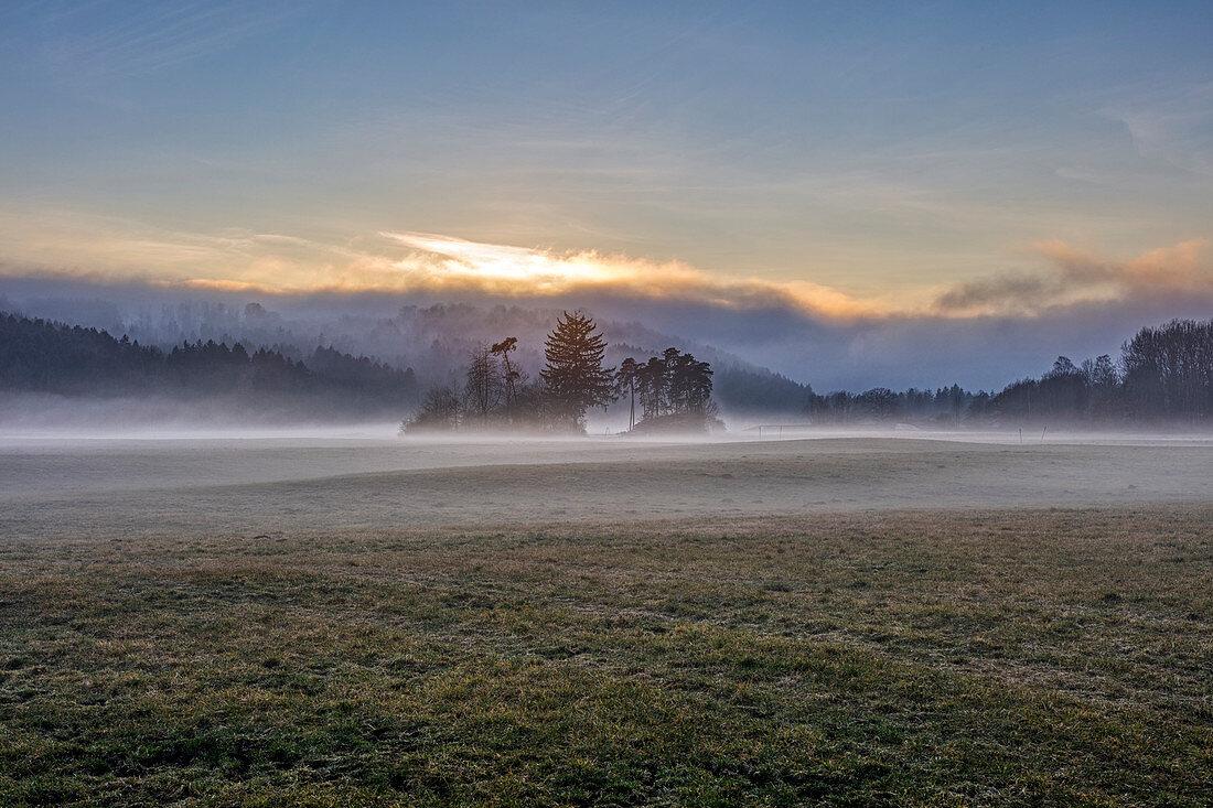 Morning mood with ground fog at sunset, Feldkirechen-Westerham, Bavaria, Germany