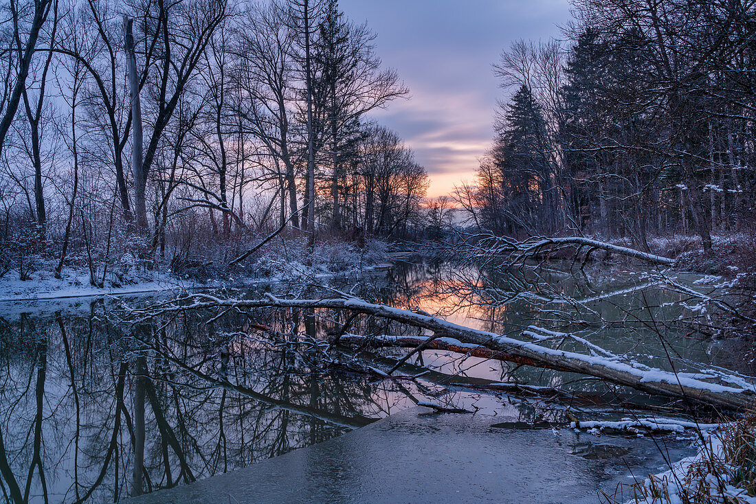 Evening mood at an oxbow lake of the Ammer near Weilheim, Upper Bavaria, Germany, Europe
