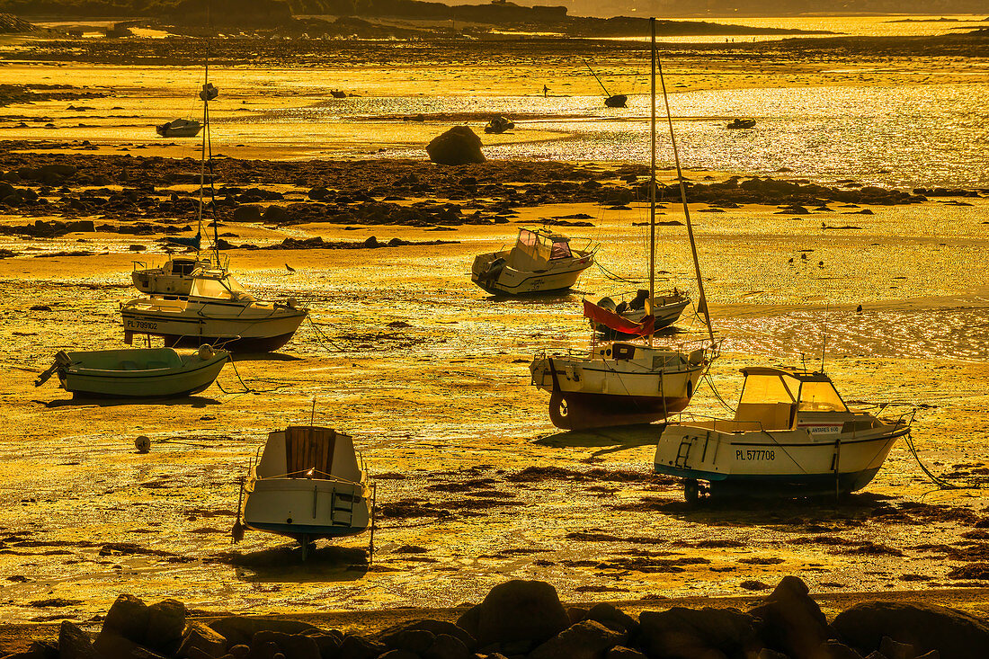 Boats in Brittany in the golden evening light at low tide,