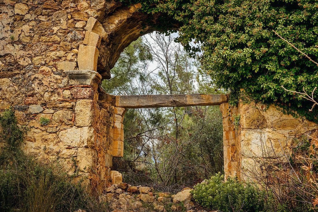 In the ruins of Syedra, Alanya, Turkish Riviera, Mediterranean Region, Asia Minor, Turkey