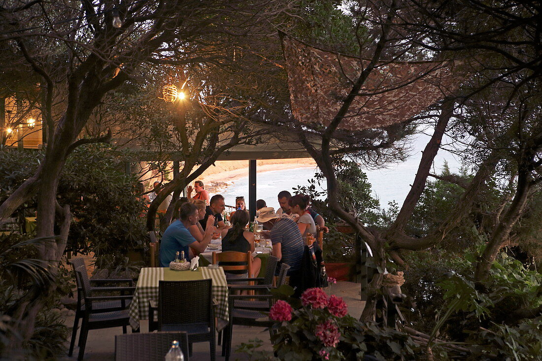 Garden of Alonaki Bay Restaurant, Corfu Island, Ionian Islands, Greece