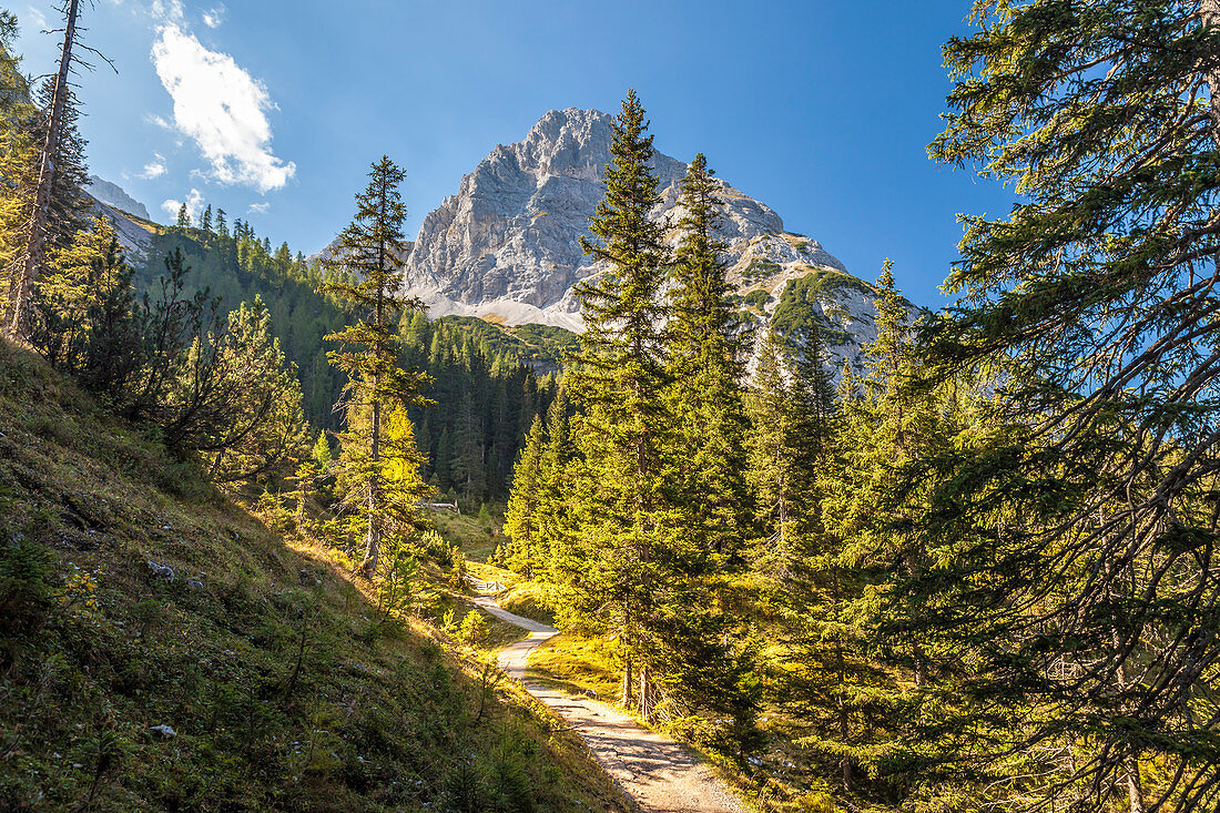 Hiking trail to Seebensee in the Gaistal with a view of the Rauher Kopf, Ehrwald in Tirol, Tyrol, Austria