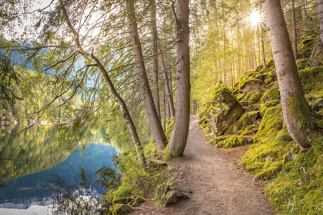 Weg im den Piburger See in den Ötztaler Alpen, Oetz, Tirol, Österreich