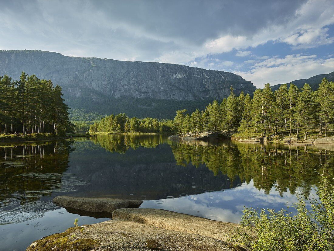 On the Otra River, Homfjellet, Setesdal, Agder, Norway