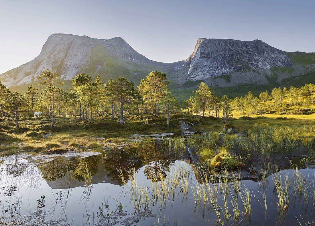 Kulhornet, Ballangen, Ofoten, Nordland, Norway