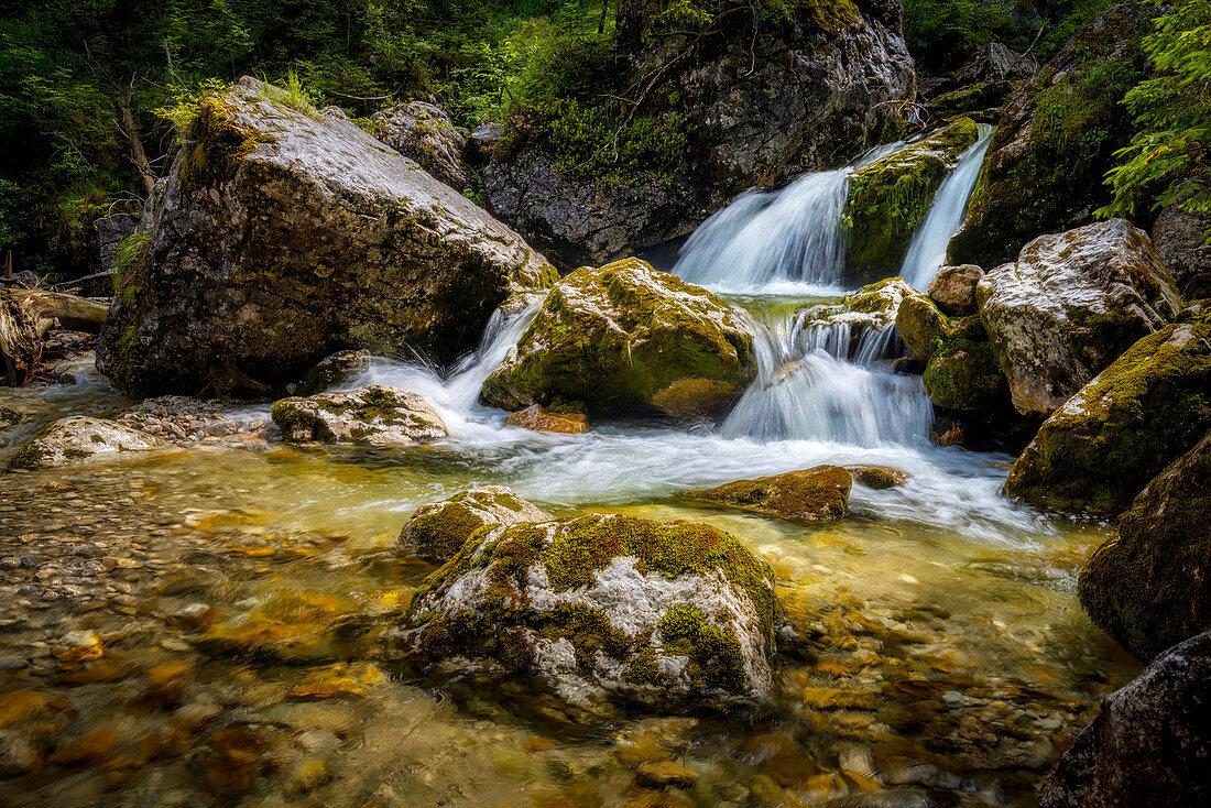At Kenzenbach in the Ammergau Alps, Halch, Bavaria, Germany