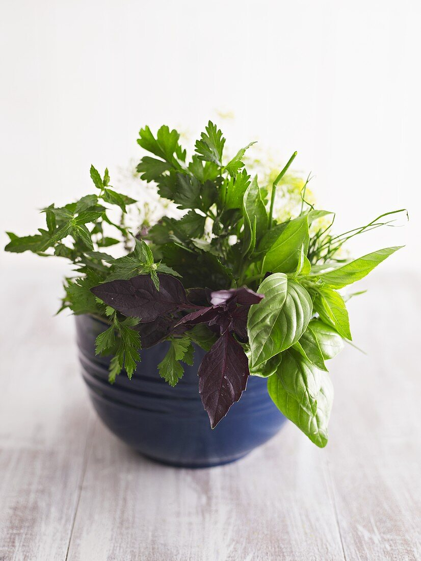 Various culinary herbs in blue pot