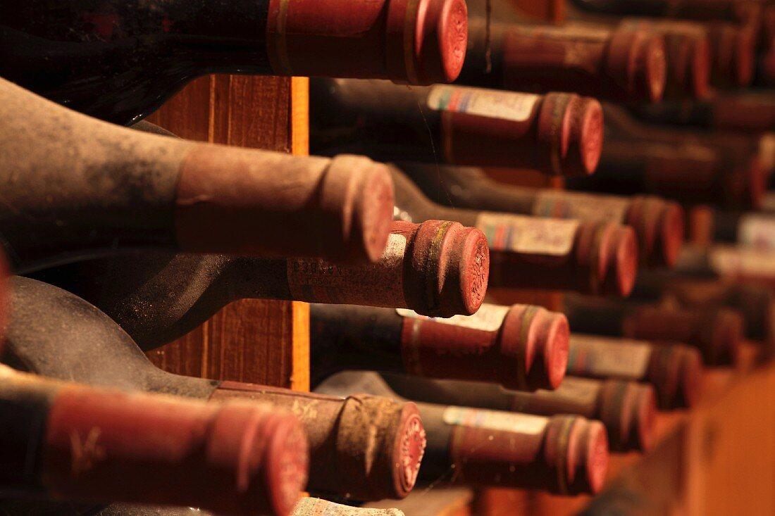 A wine cellar in a museum (Kanonkop, Stellenbosch, Western Cape, South Africa)