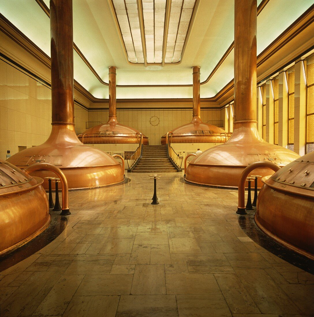 Brewing Kettles in Brewery