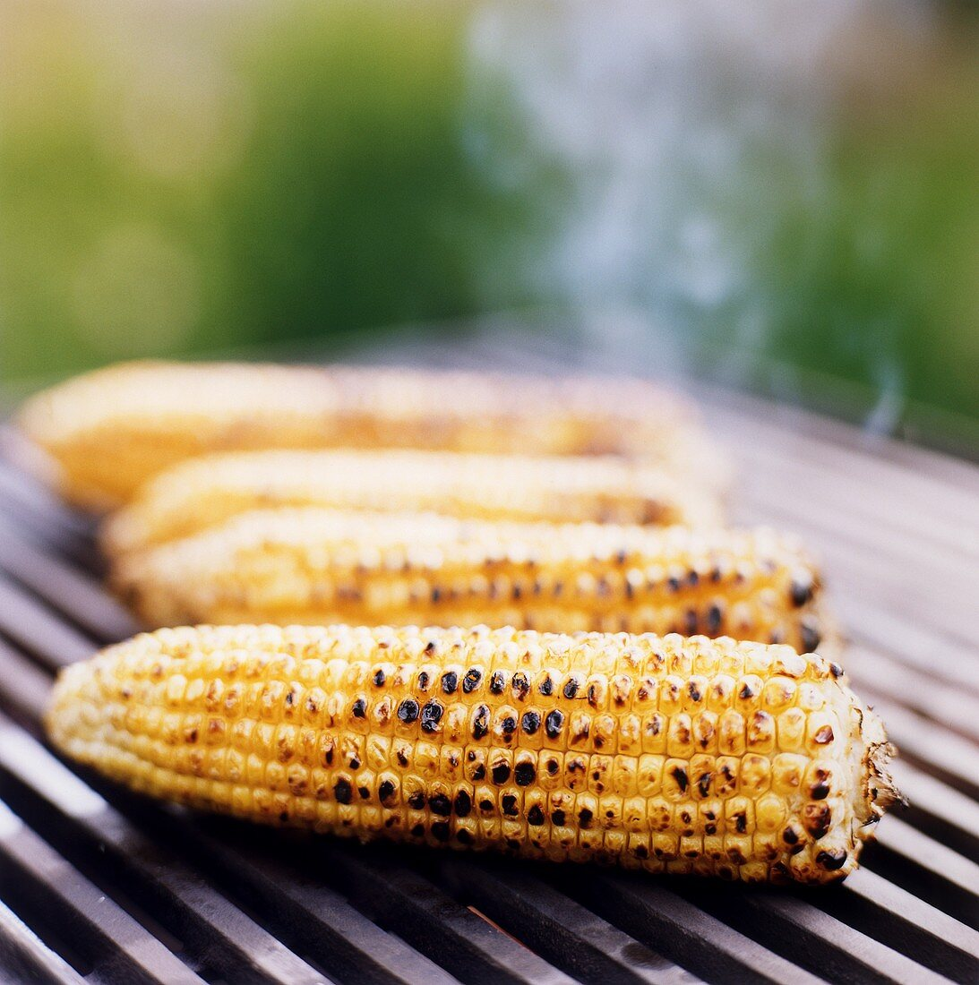 Four corncobs on a barbecue