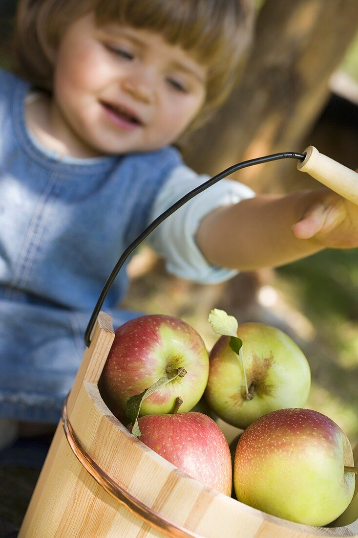 Child reaching for wooden bucket full of apples