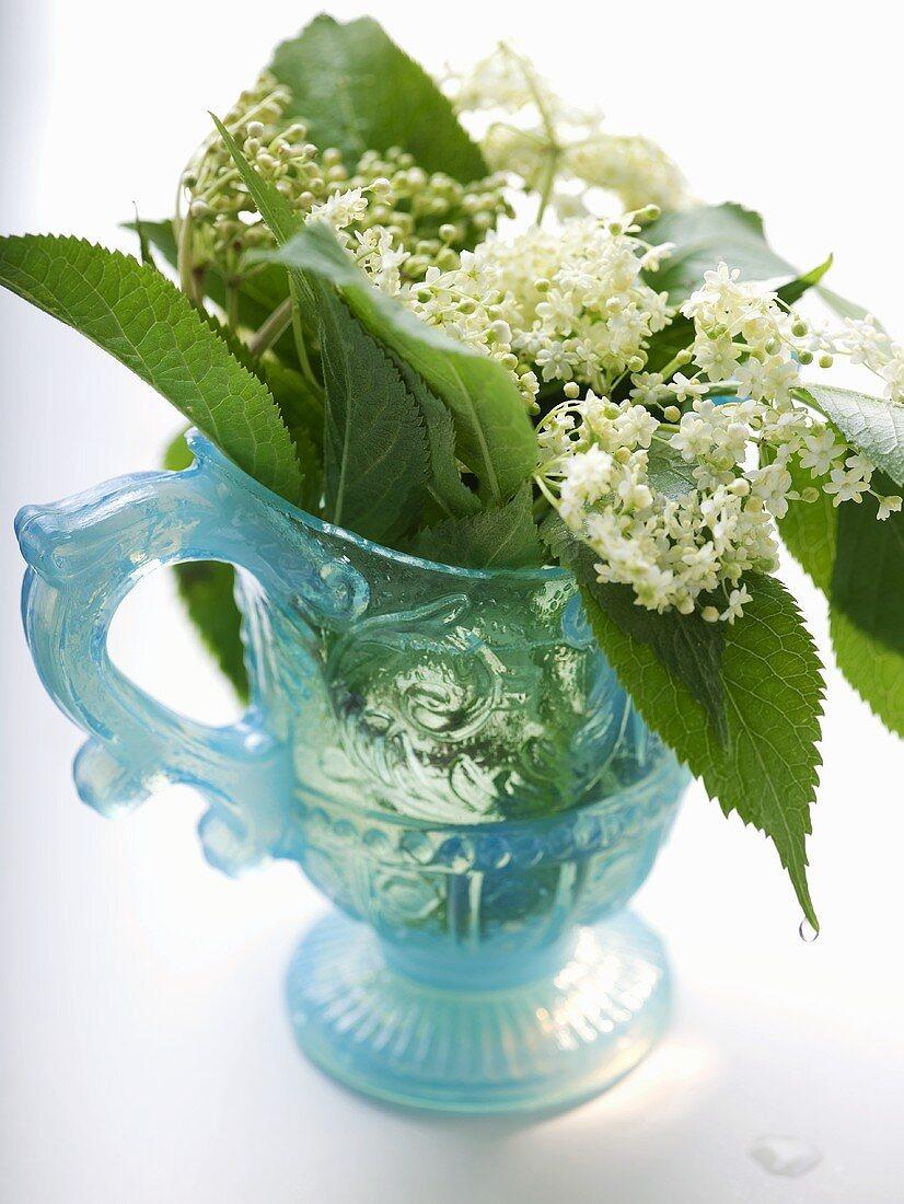 Elderflowers and leaves in blue jug
