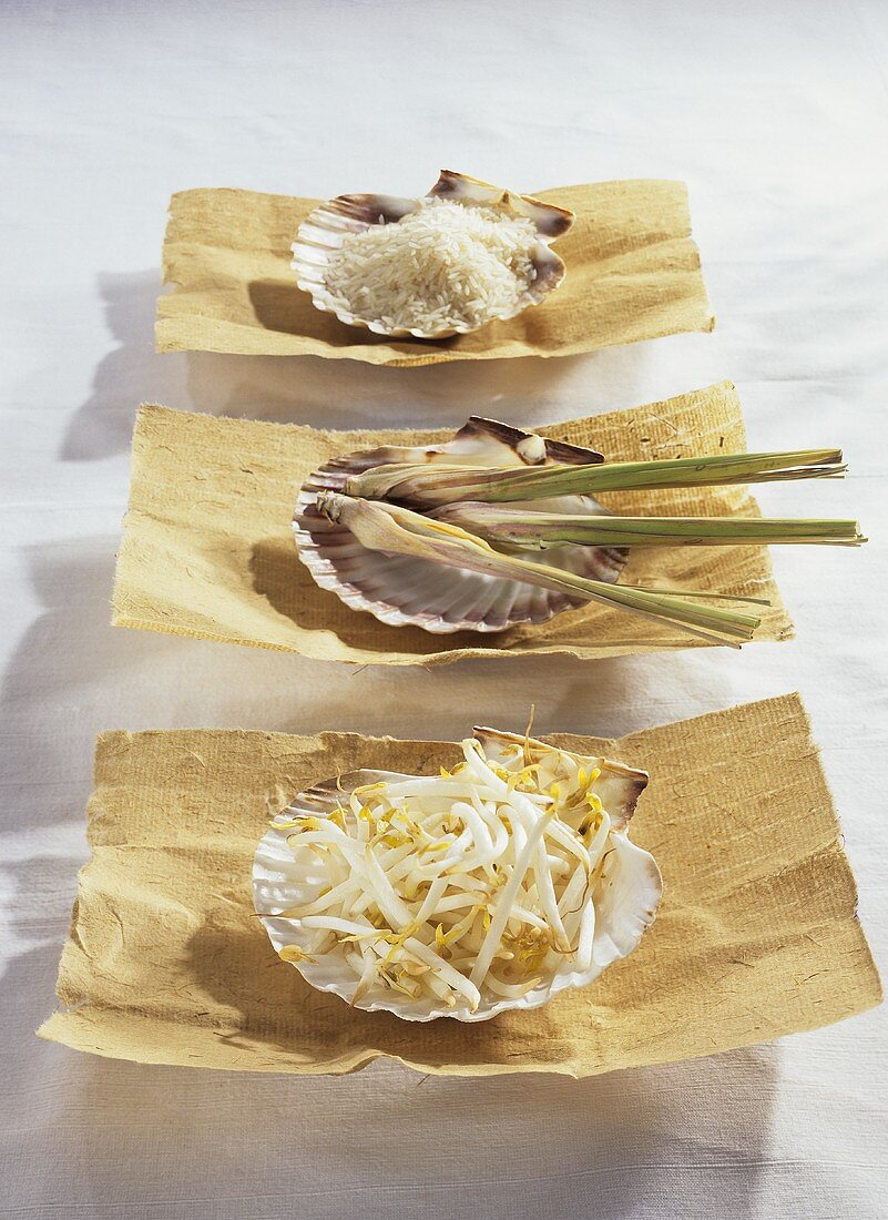 Soya sprouts, lemon grass and rice on mussel shells