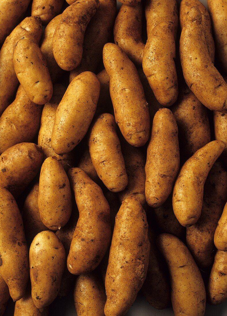 Potatoes (Kipfler variety)