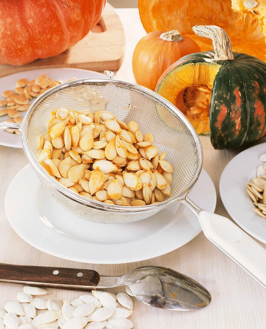 Pumpkin seeds and ornamental gourds