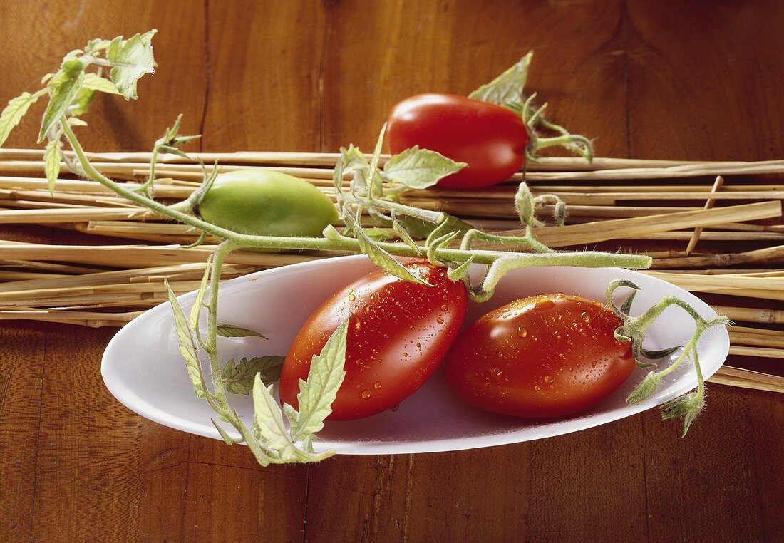 Tomatoes with vine in small bowl