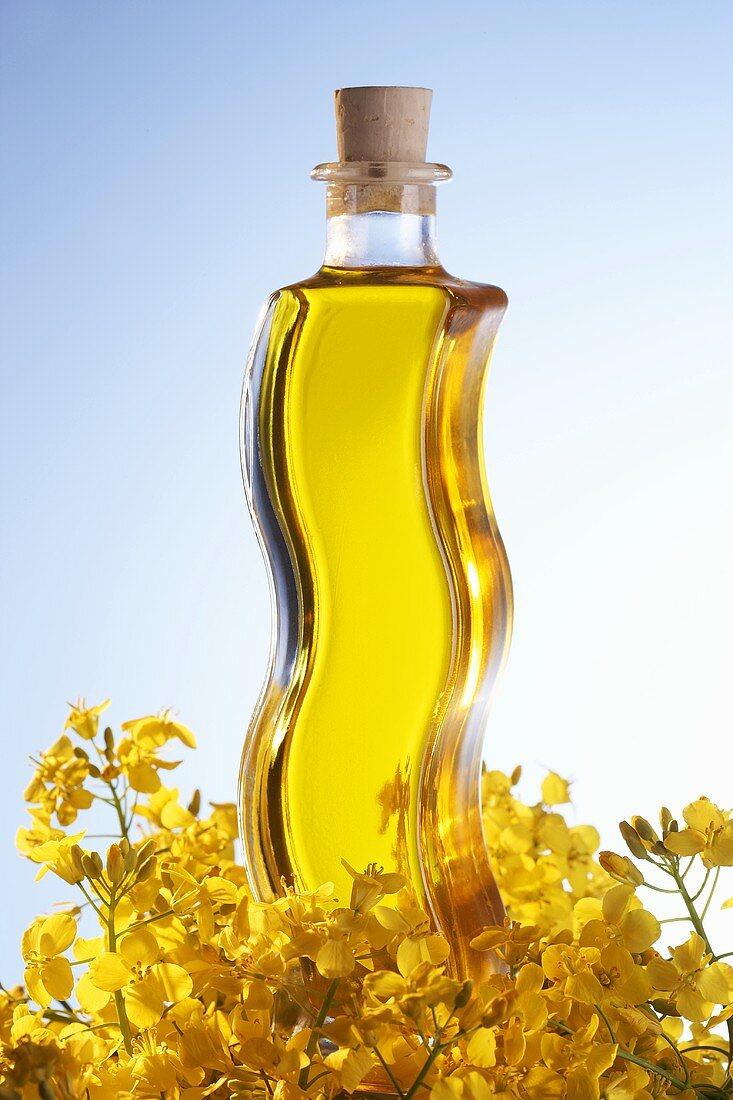 A bottle of rape seed oil with rape flowers