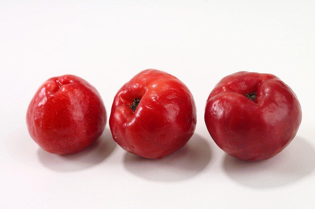Drei Acerolas