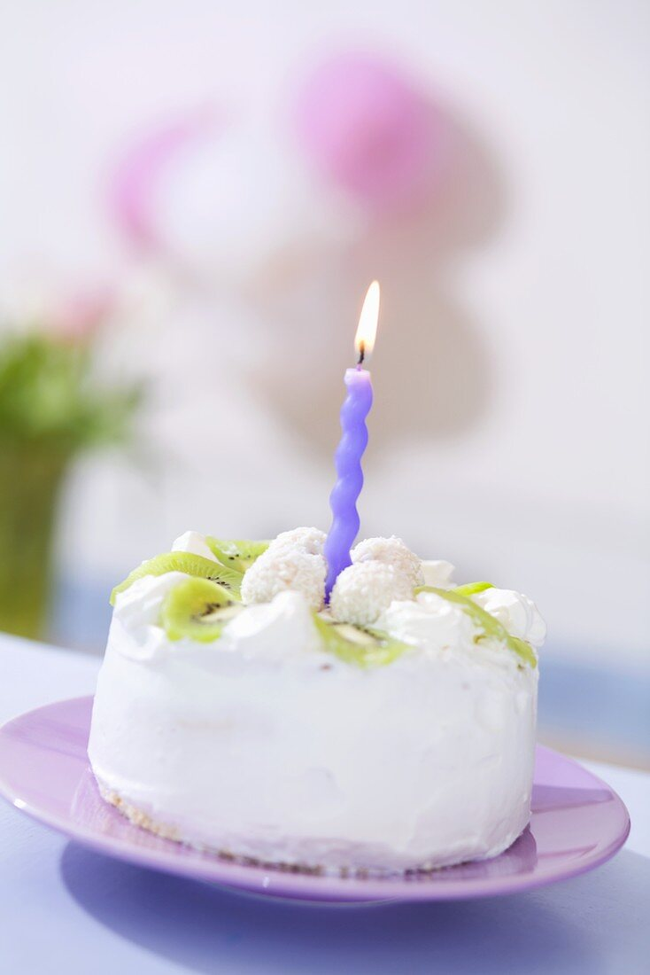Small kiwi coconut cake with one candle